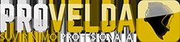 Provelda Logo